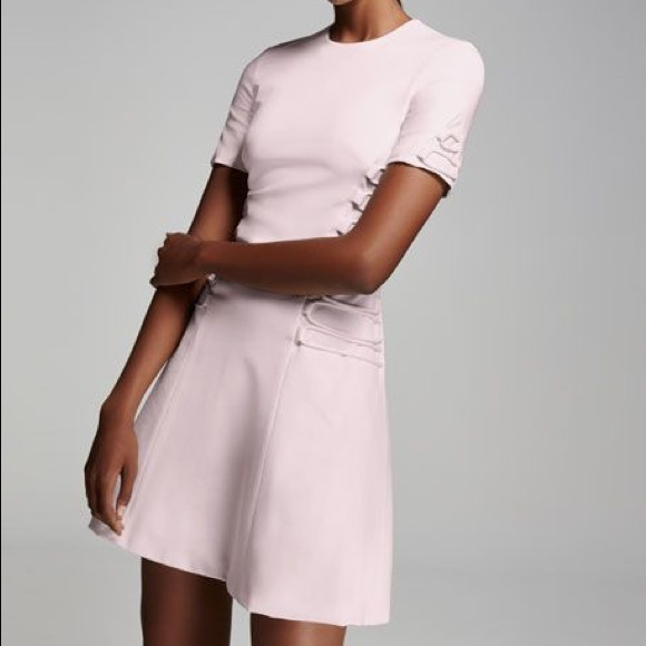 e7333a1b557f cushnie et ochs Dresses | Pink Short Sleeve Fit Flare Dress | Poshmark